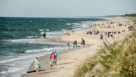 Kolonia nad Bałtykiem:  Gra o Skarb